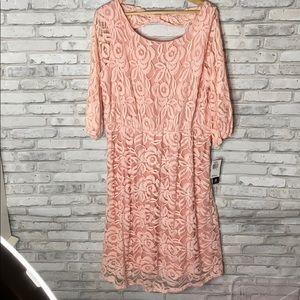 ING Pinkpale Lace Midi Dress